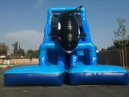 J Amp M Party Supply Rentals Water Slides